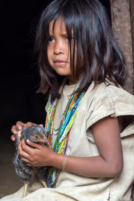MAGDALENA, COLOMBIA - FEBRUARY 6: An indigenous Wiwa girl sits with her chicken in the Magdalena Department in Colombia on February 6, 2014.  The Wiwa tribe inhabits the foothills of the Sierra Nevada de Santa Marta Mountain Range