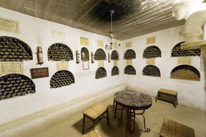 vicuna_los_nichos_cellar1