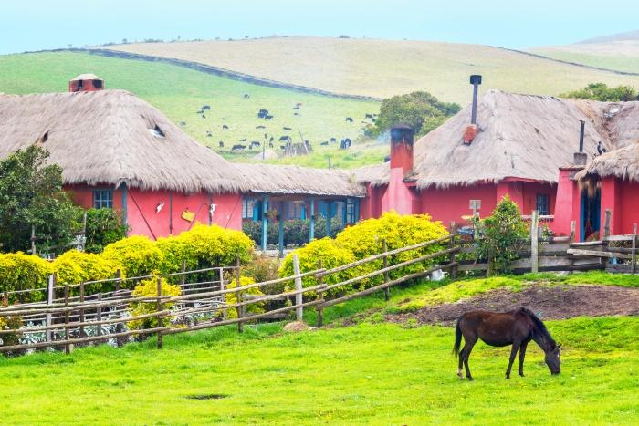 Horse and Hacienda
