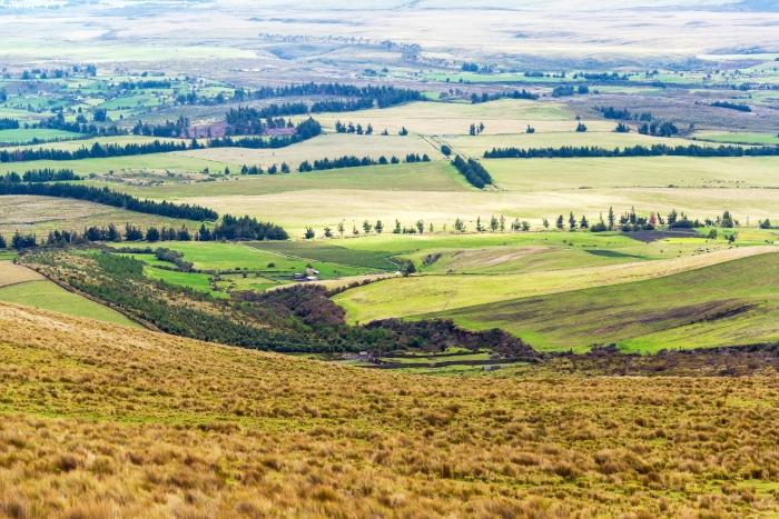 cotopaxi_lush_green_fields_landscape1